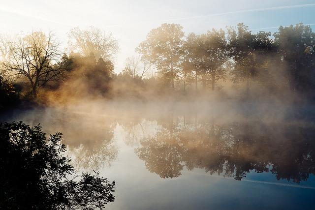 Photo of a misty morning by Conal Gallagher.