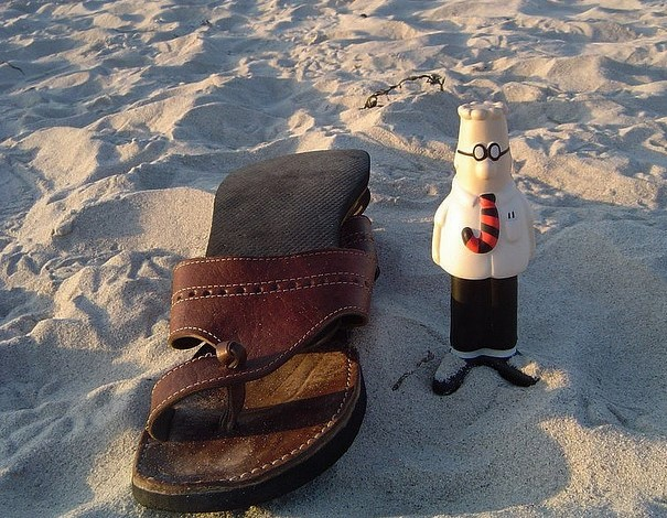 Dilbert visits the beach. Photo by Ol.v!er [H2vPk].