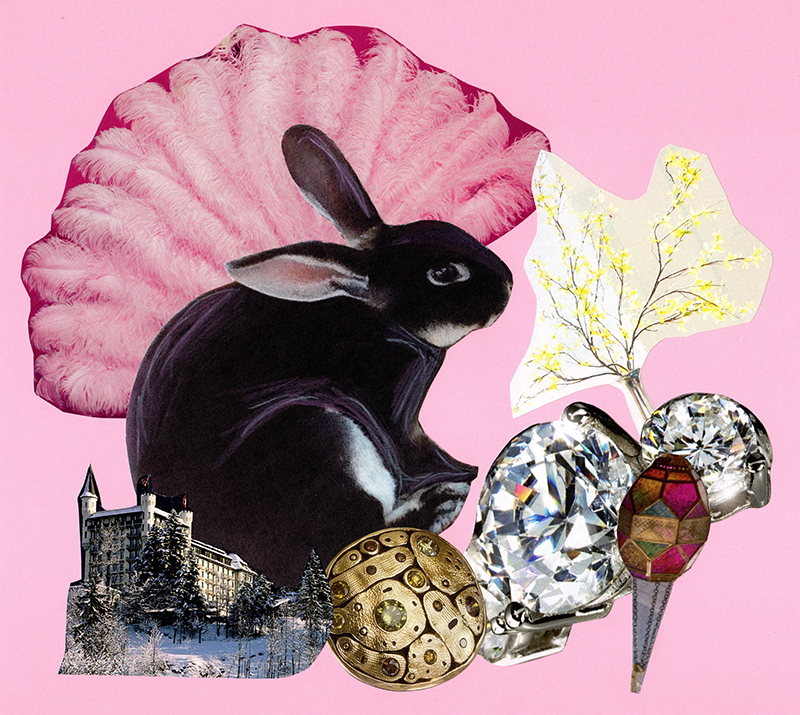 Collage of a bunny rabbit.