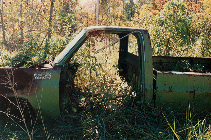 Photo by renee_mcgurk. Rusted-out truck in the woods.